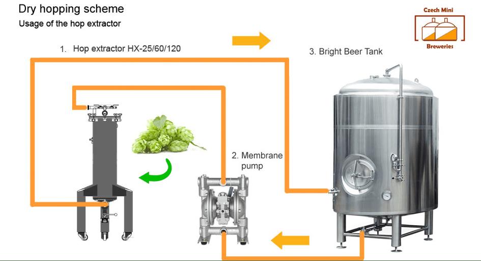 schéma d'extraction des propriétés du houblon avec la technique du Dry Hopping (houblonnage à cru)